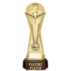 "World Football Players Player Gold 260mm, IMPORTANT - TWO PART ORDER - 1) Click <a href=""http://graveshamtrophycentre.com/catalogue/1001,0,0-medals-ribbons-boxes"">Here</a> to order a Centre for this product. 2) Return to this tab to order the Product."