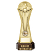 "World Football Man Of The Match Gold 260mm, IMPORTANT - TWO PART ORDER - 1) Click <a href=""http://graveshamtrophycentre.com/catalogue/1001,0,0-medals-ribbons-boxes"">Here</a> to order a Centre for this product. 2) Return to this tab to order the Product."
