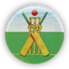 Image of Cricket