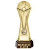 "World Football Managers Player Gold 260mm, IMPORTANT - TWO PART ORDER - 1) Click <a href=""http://graveshamtrophycentre.com/catalogue/1001,0,0-medals-ribbons-boxes"">Here</a> to order a Centre for this product. 2) Return to this tab to order the Product."