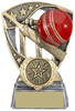 "4.25 ''  Challenger Cricket Theme Award, IMPORTANT - TWO PART ORDER - 1) Click <a href=""http://graveshamtrophycentre.com/catalogue/1001,0,0-medals-ribbons-boxes"">Here</a>to order a Centre for this product. 2) Return to this tab to order the Product."