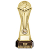 "World Football Top Goalscorer Gold 260mm, IMPORTANT - TWO PART ORDER - 1) Click <a href=""http://graveshamtrophycentre.com/catalogue/1001,0,0-medals-ribbons-boxes"">Here</a> to order a Centre for this product. 2) Return to this tab to order the Product."